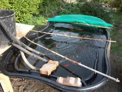 Agrandir bassin de jardin page 2 for Bache plastique bassin