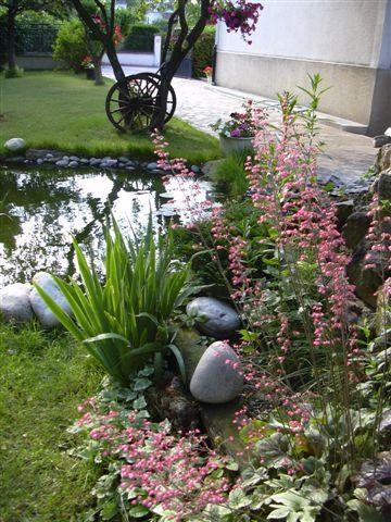 Bassin de jardin de lucienne 92 - Achat tonneau bassin colombes ...