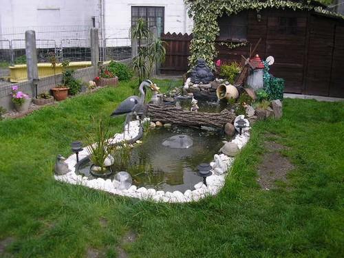 Le bassin de jardin de Baudoin