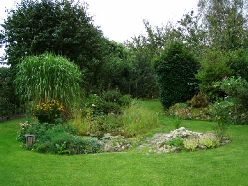bassin de jardin de bernard Waterloo (belgique) page 2