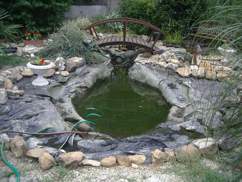 Vidanger un bassin de jardin for Petite pompe bassin