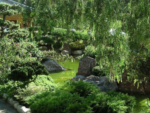 Le jardin japonais monaco page 2 for Jardin japonais monaco