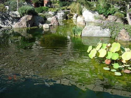 Le jardin japonais monaco page 4 for Jardin japonais monaco