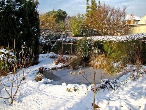 Bassins jardins sous la neige page 3 - Bassin japonais carpe koi asnieres sur seine ...
