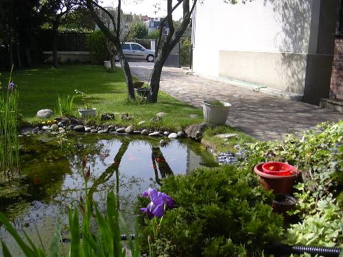 Le bassin de jardin de lucienne - Achat tonneau bassin colombes ...