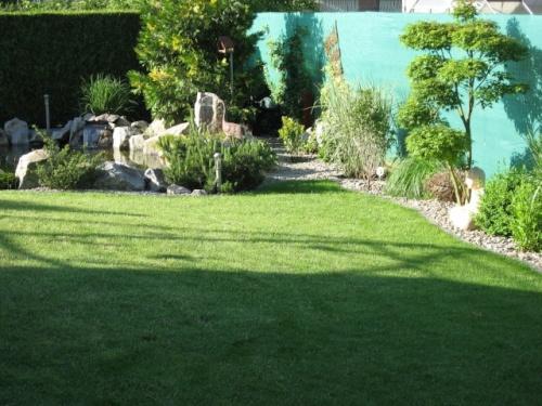 Le bassin de jardin de paul page 3 - Bassin jardin preforme saint paul ...