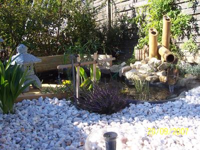 bassin de jardin de reynald. Black Bedroom Furniture Sets. Home Design Ideas
