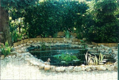 L 39 ancien bassin de jardin de jonathan - Bassin ancien de jardin orleans ...