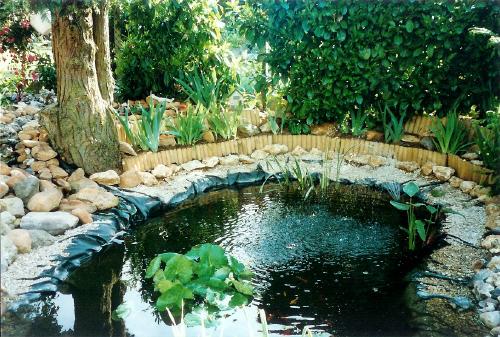 L 39 ancien bassin de jonathan de nemours page 3 - Bassin ancien de jardin orleans ...