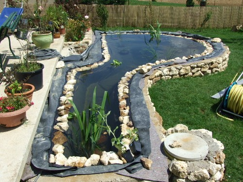 bassin de jardin de Sebastien (77) page 3