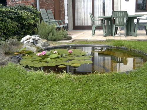 bassin de jardin de Marc en Belgique page 3