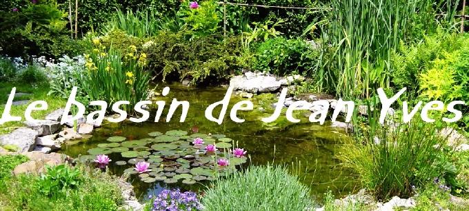 Le bassin de jardin de jean yves - Protection bassin de jardin ...